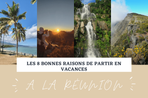 Illustration Article 8 bonnes raisons de partir a la reunion